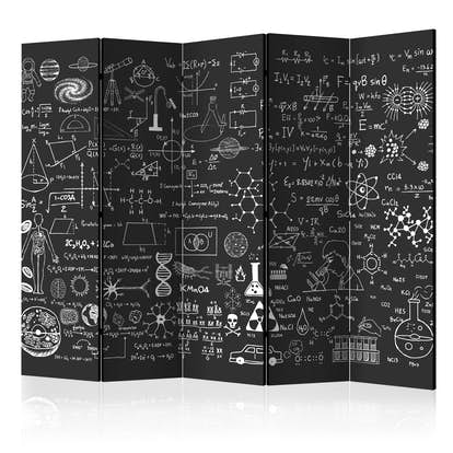 Rumsavdelare Arkiio Science on Chalkboard II 225x172 cm
